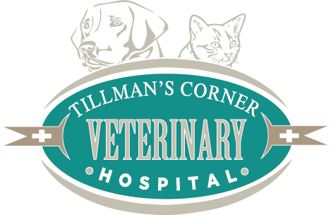 Tillman's Corner Veterinary Hospital